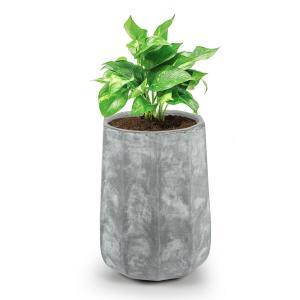 Decaflor Pflanztopf 55 x 70 x 55 cm Pflanzenkübel Pflanzkübel Pflanzgefäß |  extrem robustes Material: Fiberglas, Fiberton und Magnesium | zehneckig mit  abgerundetem Boden | Beton-Optik | ohne Wasserablaufbohrung | für drinnen und  draußen | hellgrau