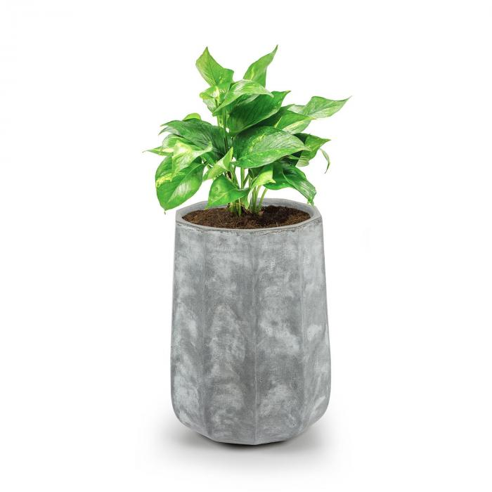 Decaflor Vaso 40 x 50 x 40 cm Vetroresina Esterno/Interno Grigio Chiaro